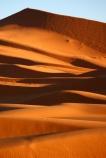 Sand dunes of Sahara