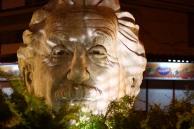 Einstein in a busch