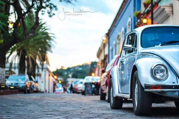 Added Charm to an already charming town. Oaxaca, Mexico, home to countless numbers of volkswagen cars, like much of the rest of the country